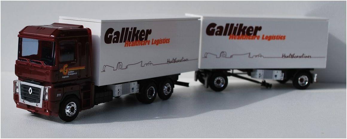 GallikerMagnum311