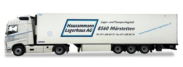927925_Hausammann